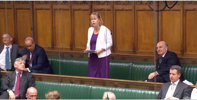 Ruth speaking in Parliament